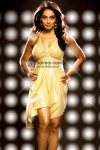 Bipasha Basu in Bachna Ae Haseeno Movie