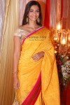 Sonam Kapoor At Sameer Dattani-Ritika Jolly's Wedding Reception