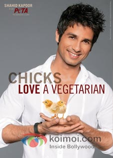 Shahid Kapoor's Love For Chicks