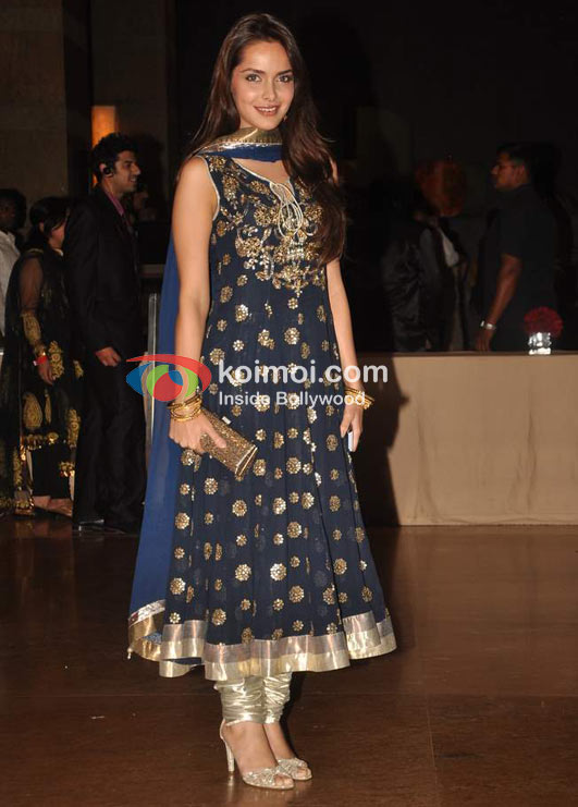 Shazahn Padamsee At Ritesh Genelia Wedding Reception