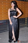Parineeti Chopra at the red carpet of The Filmfare Awards 2013