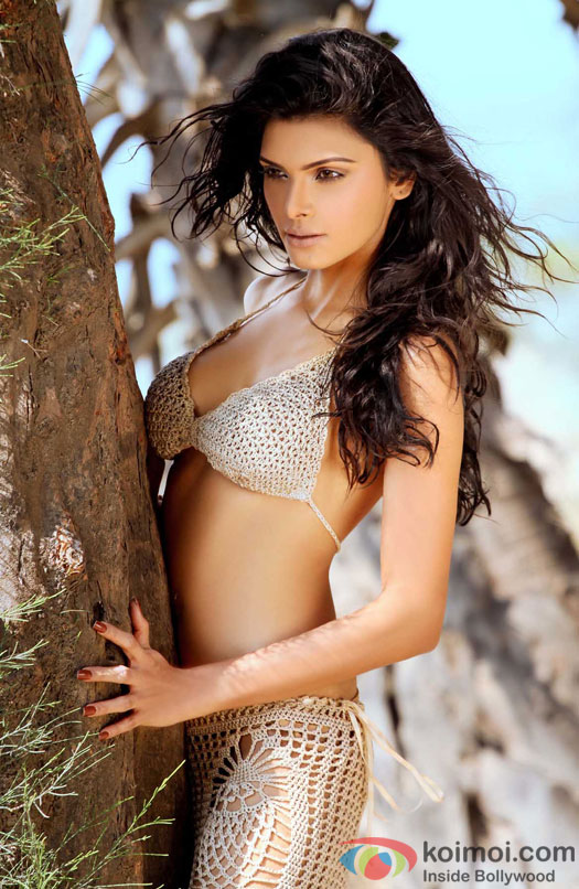 Hot Sherlyn Chopra stuns in Lacy Outfit