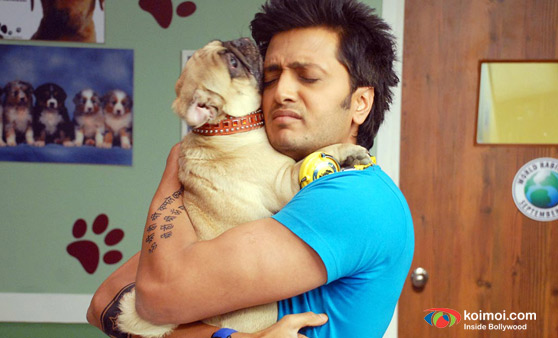 Ritesh Deshmukh In Kyaa Super Kool Hai Hum Movie Stills