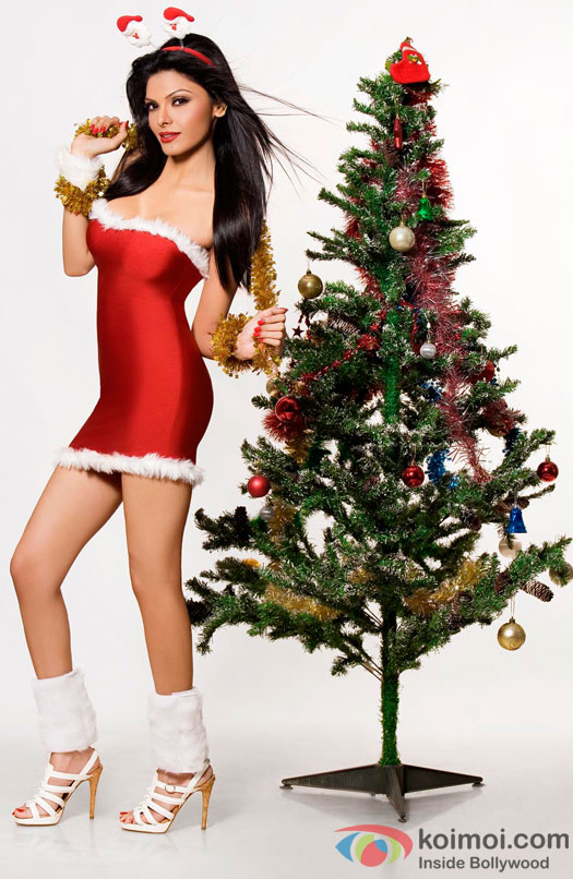 Sherlyn Chopra Poses Sexily in a Santa Look
