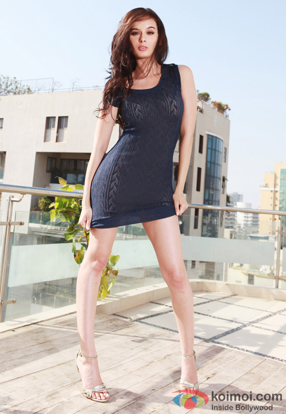 Evelyn Sharma sure to make a rocking start in the Indian Film Industry