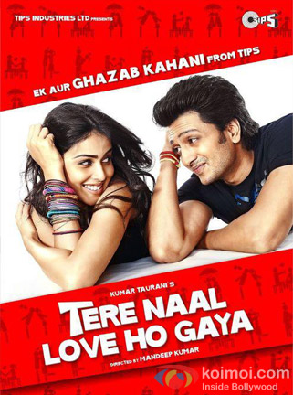 Ritesh Deshmukh And Genelia D'Souza (Tere Naal Love Ho Gaya Movie Poster)