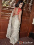 Mahi Gill Promotes Saheb Biwi Aur Gangster Returns Movie Pic 1