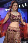 Ameesha Patel walks the ramp at HVJ Fashion Show