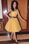 Amrita Rao poses during the theatrical trailer launch of film Satyagraha
