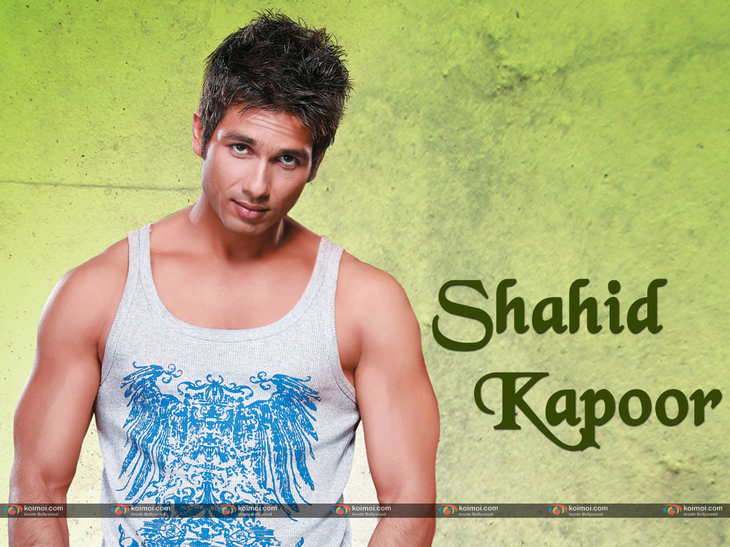 Shahid Kapoor Wallpaper 6