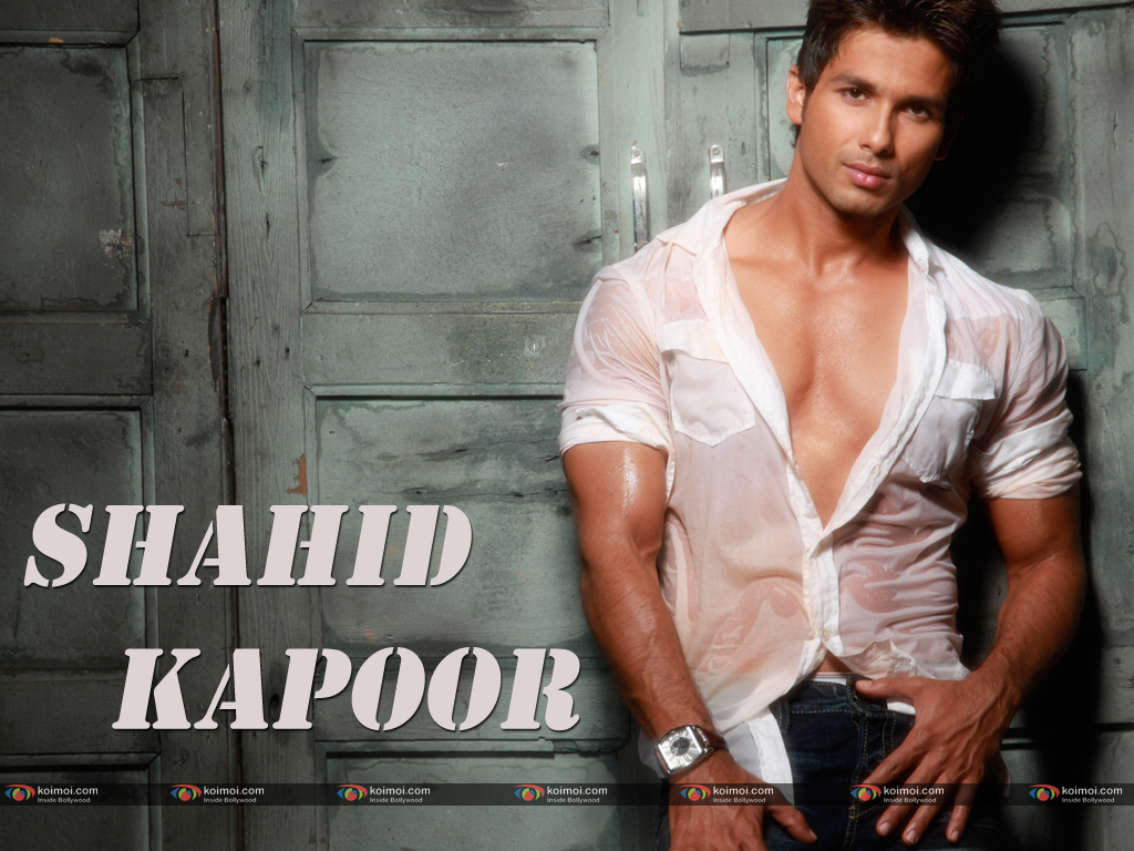 Shahid Kapoor Wallpaper 7