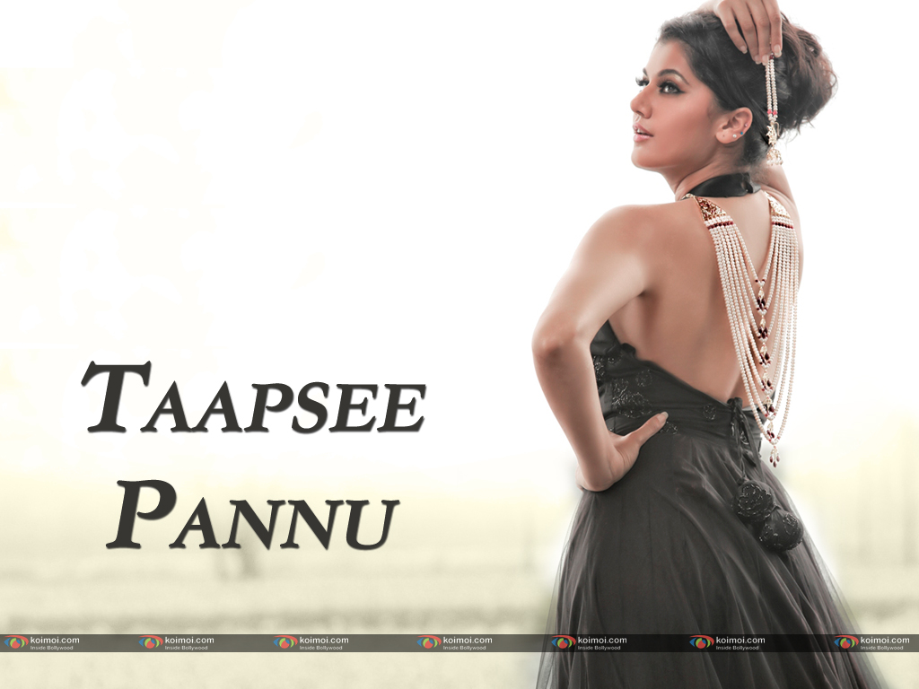 Taapsee Pannu Wallpaper 3
