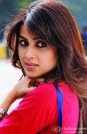 Genelia D'souza Snapped Looking Gorgeous