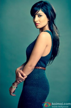 Pallavi Sharda Gives A Sexy Pose