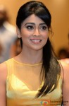 Shriya Saran Flashes Her Pretty Smile