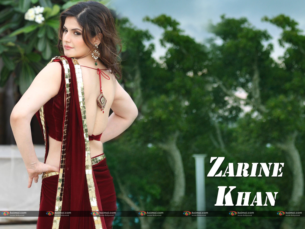 Zarine Khan Wallpaper 3