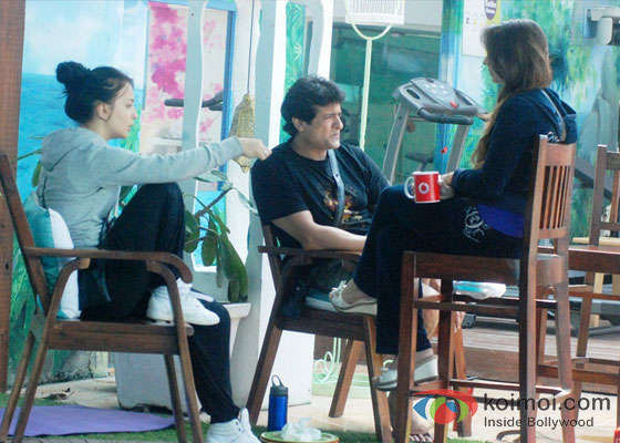 Elli Avram, Armaan Kohli And Pratyusha Banerjee in Bigg Boss 7