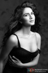Vaani Kapoor gives a hot pose for the lenses