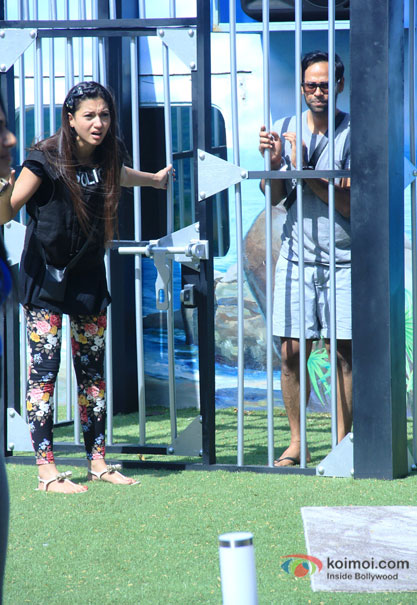 Gauhar Khan and VJ Andy in Bigg Boss 7