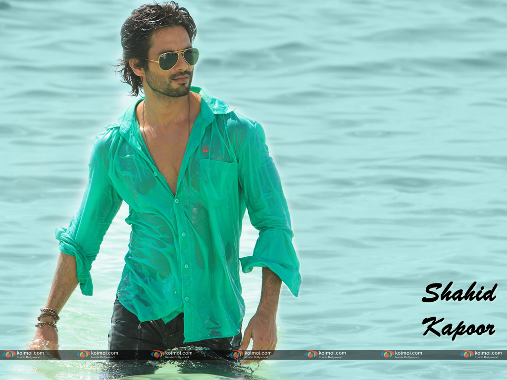 Shahid Kapoor Wallpaper 9