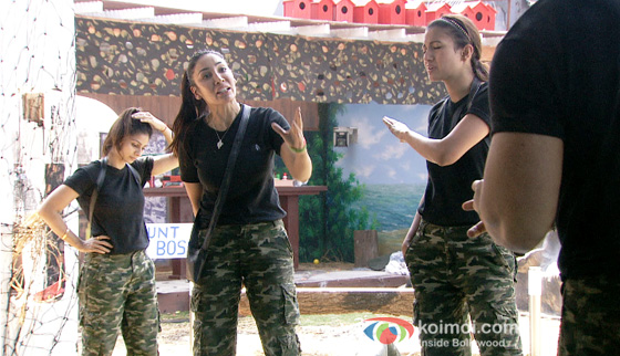 Tanisha Mukherjee, Sofia Hayat and Gauhar Khan in Bigg Boss 7