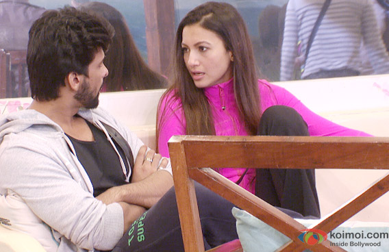 Kushal Tandon and Gauhar Khan in Bigg Boss 7 Pic 1