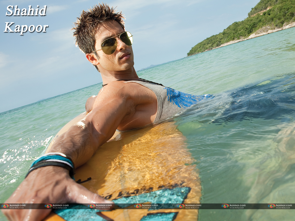 Shahid Kapoor Wallpaper 13