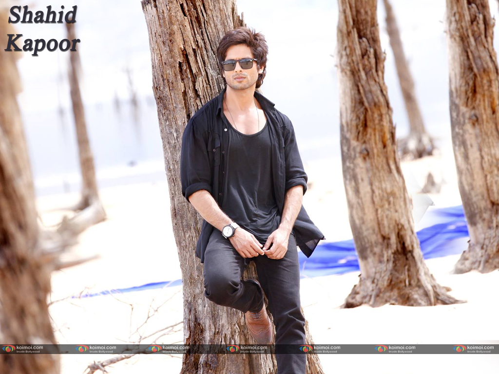 Shahid Kapoor Wallpaper 14