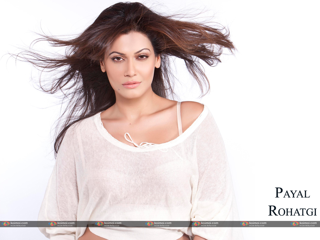 Payal Rohatgi Wallpaper 2