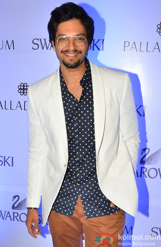 Ali Faizal during the launch of a art event by Swarovski