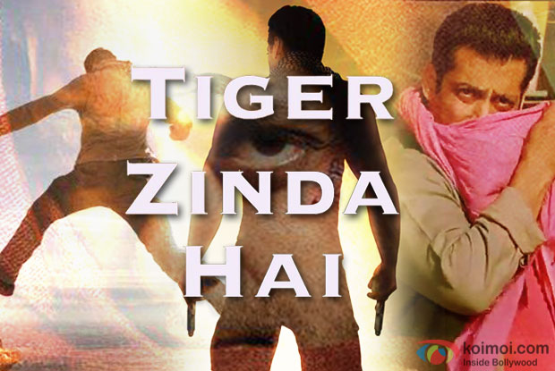 Post Tubelight; Salman Khan To Star In Ek Tha Tiger Sequel?