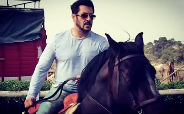 Salman Khan Takes Horse Training Session For Tiger Zinda Hai