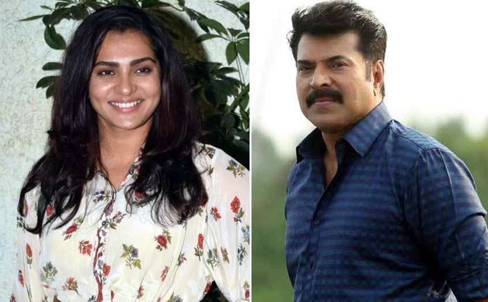 A Fan Of Superstar Mammootty For 'Cyber Bullying' Actress Parvathy