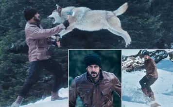 Tiger Zinda Hai Promo: Salman Khan Fights Wolves & We Can't Wait For The Movie