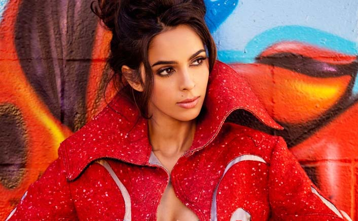 Don't own or rent any apartment in Paris: Mallika Sherawat