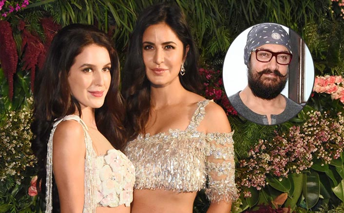 Isabelle Kaif: It Would Be A Dream To Work With Aamir Khan