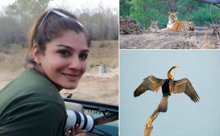 Raveena Tandon's wildlife photography to be exhibited