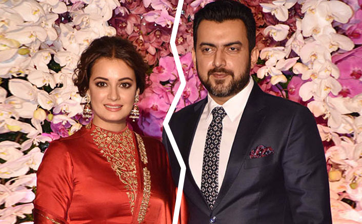 Image result for dia mirza and sahil sangha