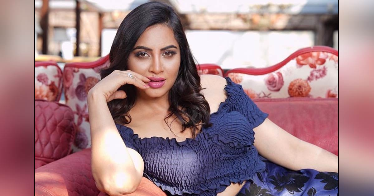 """Arshi Khan: """"When Bigg Boss Is Nearby, We Get To Read About Fights Among  Happily-Married Couples"""""""